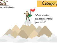Category – What market category should you lead?